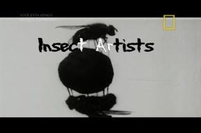 Insectomania – Insetosartistas