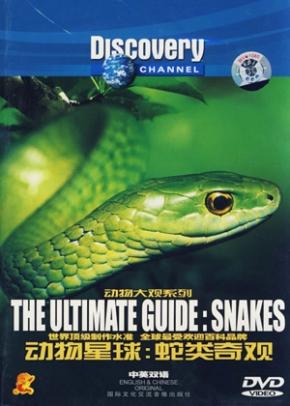 O Guia Completo:Cobras