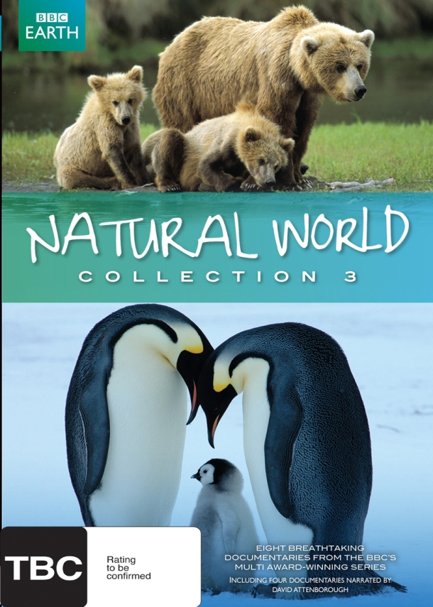 casa animal natural world colection