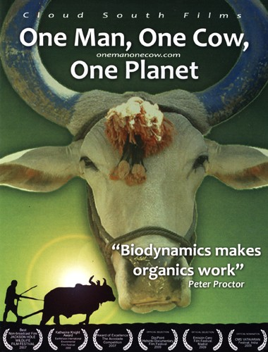 um homem uma vaca um planeta