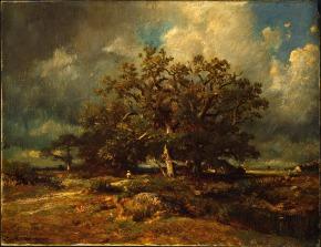 A Árvore dasÁrvores