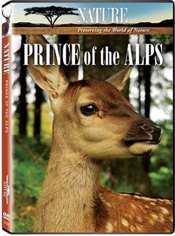 o principe dos alpes