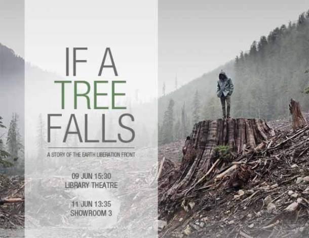 e se uma árvore cai