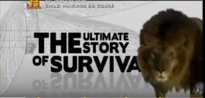 Evolução: A História da Sobrevivência – 8episódios