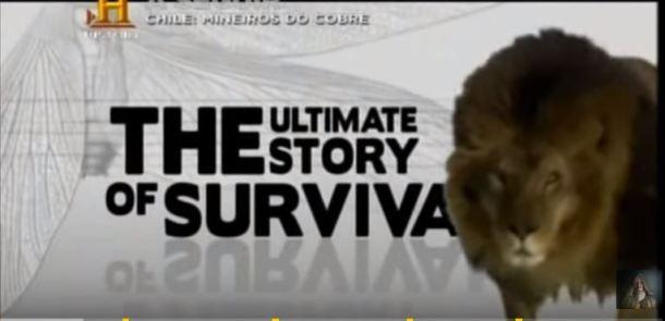 evolução a história da sobrevivência