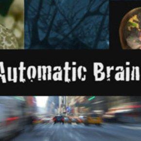 O Cérebro no PilotoAutomático