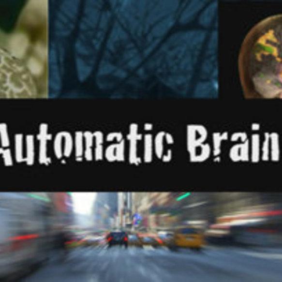 o cérebro automático