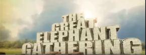 Elefantes, O GrandeEncontro