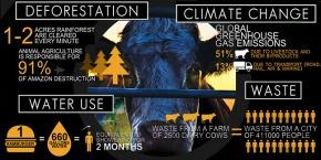 O Segredo da Sustentabilidade