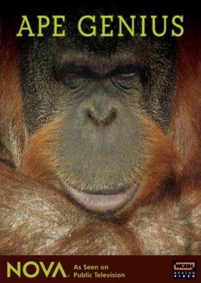 Macacos Geniais